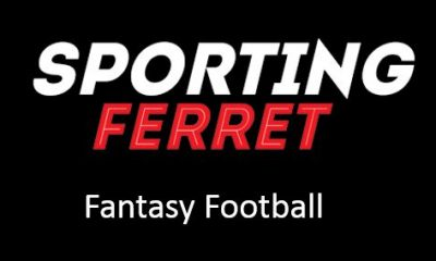 sportingferret Logo - FPL