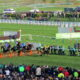 Cheltenham Festival 2021: Champion Hurdle Preview