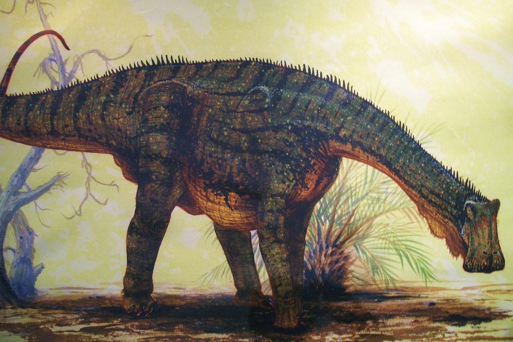 Nigersaurus - What Dinosaur Has 500 Teeth?